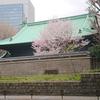 【史跡 湯島聖堂 昌平坂学問所と桜の開花】