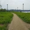 おすすめ漢江公園散歩!