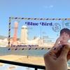 Arigato BG JAPAN さんpresents  パク・ボゴム1stアルバム【blue bird】リリースイベントin神戸に行って来た