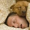 7時間以上の睡眠は体重維持のためにも必要であることが判明