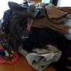 洗濯物の山!