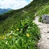 三ノ沢岳(2,847m) 2021年7月20日