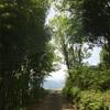 過去ブログ その10 【いなかの風キャンプ場】 @ 長野 上伊那郡 2016年 5月