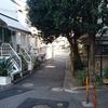 代々木上原不動産 賃貸 毎日速報!!1/22(日)