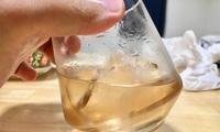 梨酒の試飲、初めてにしては上出来。ソーダで割れば立派なデザート酒