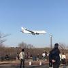 成田空港 さくらの山公園 飛行近い!大迫力