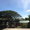 フィリピン英語留学 CNE1に行った話