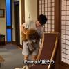 2021.8.19 【Emmaとトレーニング‼️】 Uno1ワンチャンネル宇野樹より