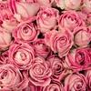 ブライダルブーケを華やかにするには花びらの枚数が多いお花がおすすめ!おすすめのお花の名前を紹介します