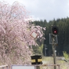 桜とローカル線、他寄り道♬