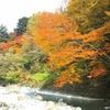 秋と冬にこそ行きたい群馬県の美観な温泉!