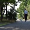 散歩の効用