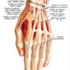 ジプシージャズ入門〜番外編③〜腱鞘炎の治し方、治療法