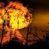 モラハラ夫大爆発