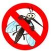 【海外の蚊に注意!】ボランティアや東南アジアへ行く際の対策
