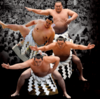 【大相撲七月場所13日目】白鵬12勝目、最多勝星数1048勝の金字塔達成♪(来場所の番付予想付き)