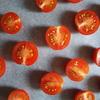 セミドライトマトは簡単かつ美味しい、応用が利くすぐれものですよ【セミドラ~イ】