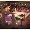 【あつ森】5/19はボクシングの日!地下闘技場で死にさらせ【部屋紹介】