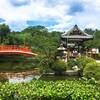 【京都中京区】日本初の「桜の花見」の庭園であり、祇園祭の原点・パワースポット「神泉苑」を訪れよう!