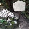 宮崎 青島 青島神社
