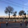 南米一周③メキシコシティ