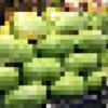 【寄稿】台湾の巨大フルーツ、大西瓜を食べてみた!