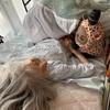 祖母と私day8
