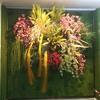 ≪本店3階≫ お正月壁面緑化 ~Green-wall Style~