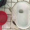東南アジアで僕が度肝を抜かれたトイレ3選