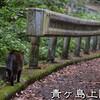 青ヶ島旅行記【5】丸山遊歩道・ひんぎゃ弁当・ふれあいサウナ・流し坂