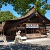 はだか祭で有名な国府宮神社に人がおらず閑散としていたので参拝ついでにおみくじを引いてきた