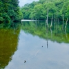 瀬戸大正池(愛知県瀬戸)