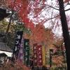 比叡山延暦寺塔頭「赤山禅院」の境内を秋色に染める紅葉