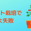 トマト栽培で大失敗!!