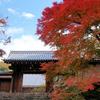 京都 紅葉100シリーズ 紅葉の参道 曼殊院門跡 NO.73