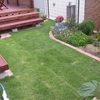 我が庭に青い芝生を
