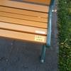 京都府立図書館の屋外ベンチでの禁煙措置を要望