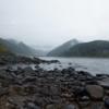 和歌山の落ち鮎シーバス