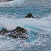 冬景色の撮影。被写体を探しに海へ行ってみましたが・・・