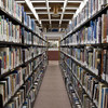 【夢日記】白いライオン、図書館と読書会
