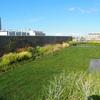 札幌駅前の息抜きスポット、空中庭園