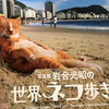 世界の個性溢れるネコたちの写真展「岩合光昭の世界ネコ歩き2」