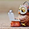 ブログを毎日更新しても決して「収益が増える」ということは無い!