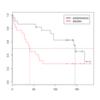 生存曲線の比較