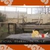 東武動物園に行ってきた -けものフレンズ聖地巡礼-③