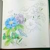 【花日和 花だより】を塗る。 アサガオ2