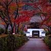 京都・宇治 - 薄明の興聖寺 琴坂