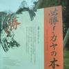 名古屋城のカヤの木