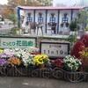 秋のとっとり花回廊