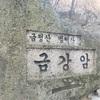 金井山城の北門に着いたけど